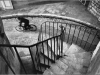 Bicycle rider - Henri Cartier Bresson, 1932