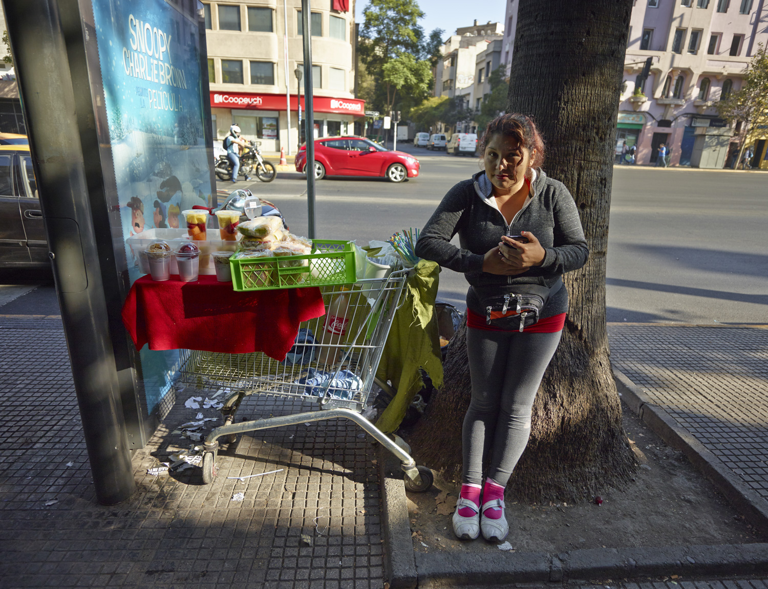 Vendor - Santiago de Chile, March 2016