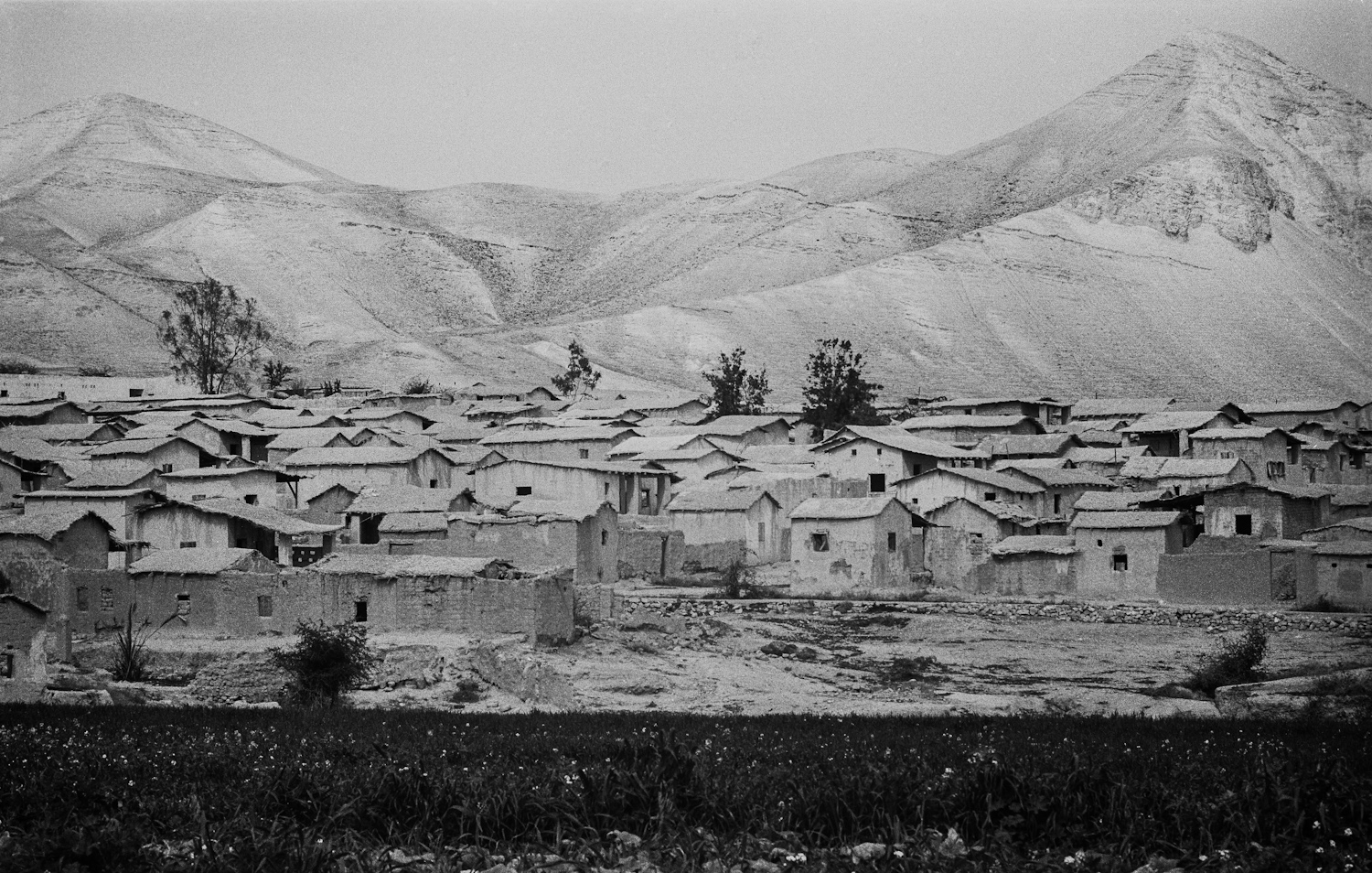 Refugee camp - Jericho, 1974