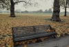 Bench - Hyde Park, 1990