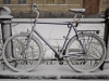 Bicycle - Helsinki, 2008