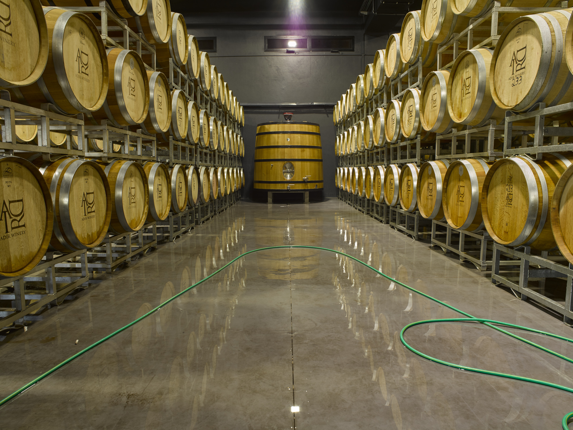 Wine barrels - Galil, February 2017