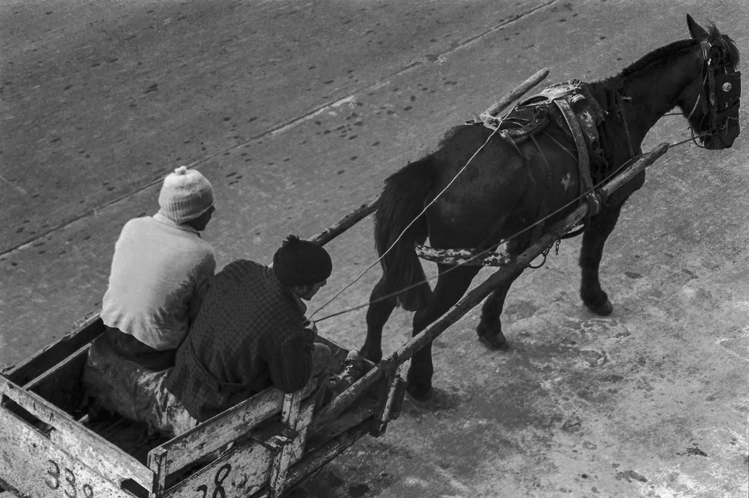 Horse and cart - Montevideo, 1976