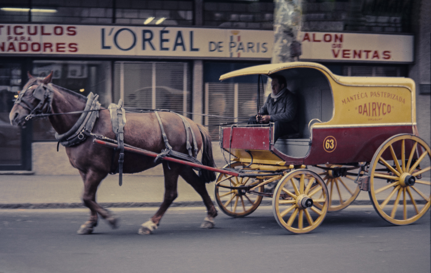 Horse and Carriage - Montevideo, 1976