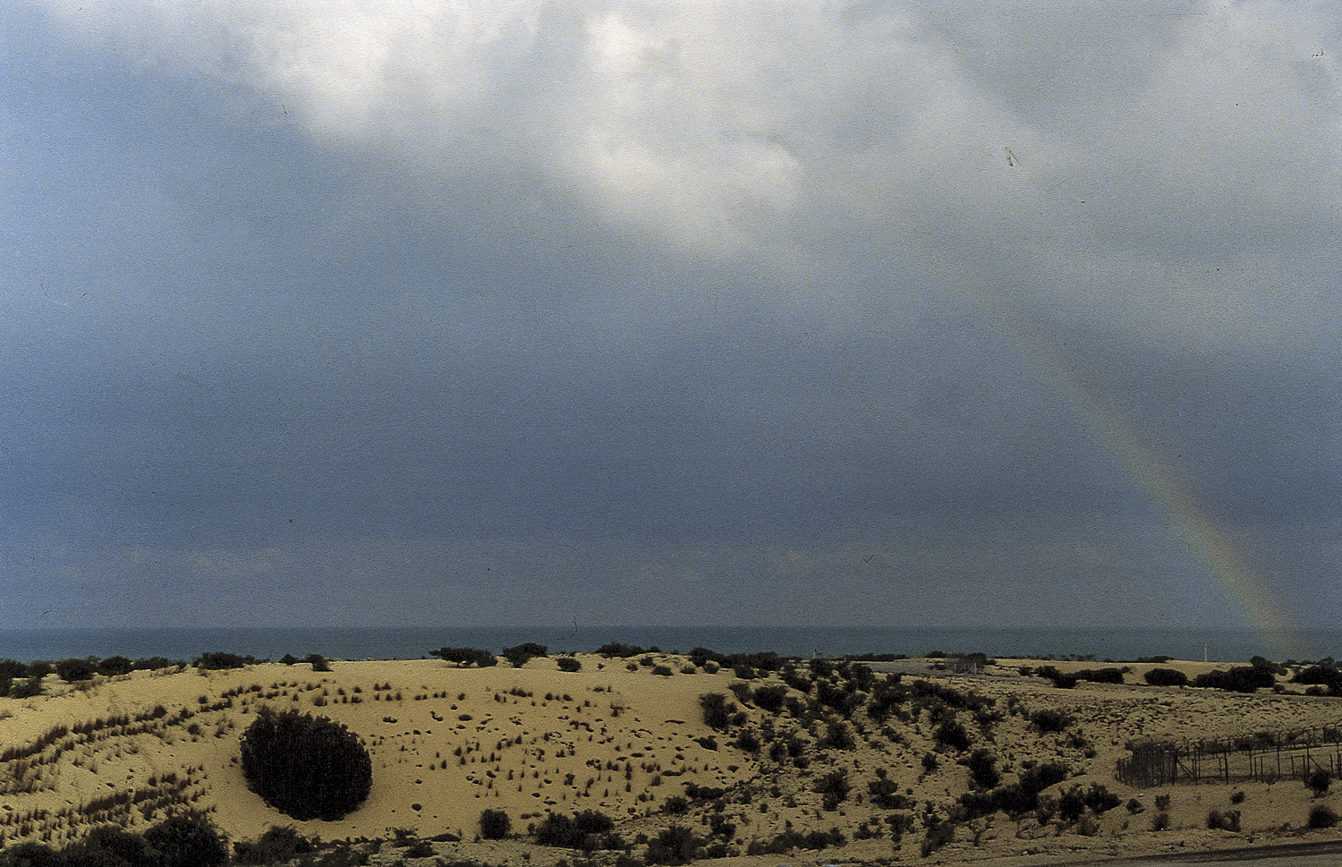 Rainbow - Camp Nuria, Gaza Strip, 1990