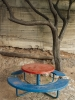 Tree and table - Herzlia, 2001